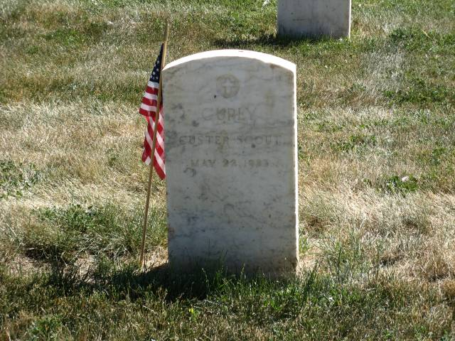 Curly in Custer National Cemetery